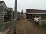 Community in Nantong. Photo courtesy of Amy Putansu.