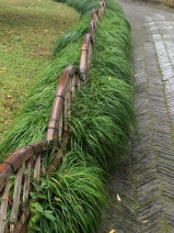 Humble Administrators Garden walkway edging. Photo courtesy of Amy Putansu.